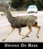 Driving on base
